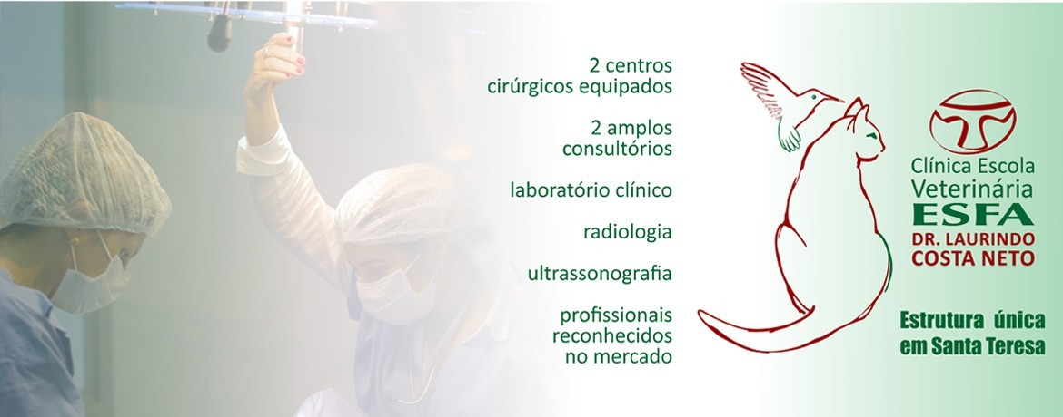 bannerclinicavet